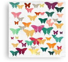 Butterflies & moths Canvas Print