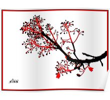 flame tree ... Poster