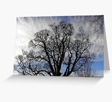 Tree silhouette Greeting Card