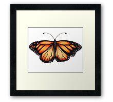 Monarch Butterfly. Framed Print