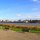 Antwerp Skyline by Gilberte