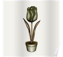 Flower & Pot III Poster