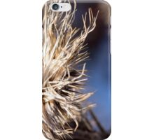 Closeup of brown thistles in a snowy field abstract detail iPhone Case/Skin