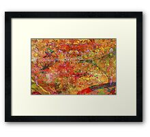 Colors of Light Framed Print