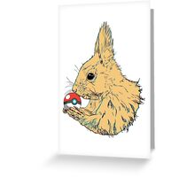 Squirrel ball Greeting Card