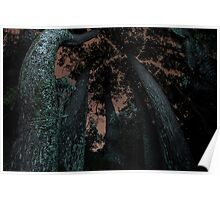 Round Trees at Night Poster