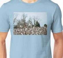 Cotton Field at Boone Hall Plantation Unisex T-Shirt