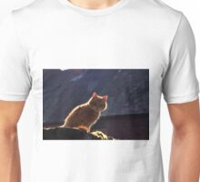 Ginger cat with dark background Unisex T-Shirt
