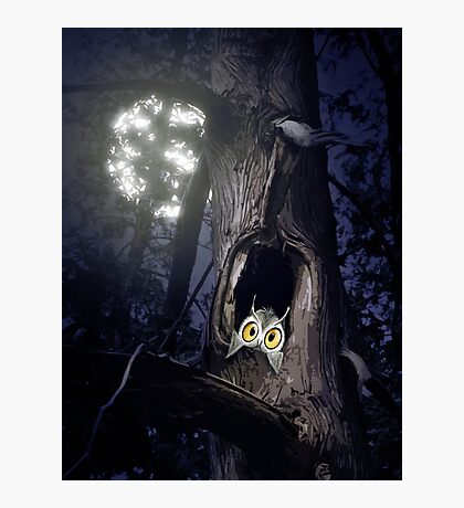 Cute baby owl in tree hole at night art photo print Photographic Print