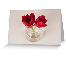 Red tulip still life Greeting Card