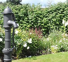 Water Pump & Well Garden by CreativeEm