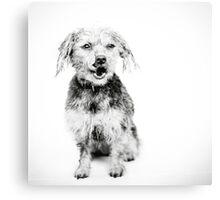 Black And White - Lexie Canvas Print
