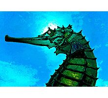 The Great Seahorse Photographic Print