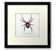 Latrodectus mactans (southern black widow) Framed Print