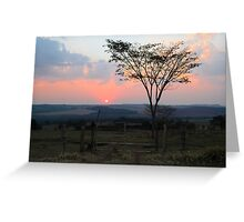sunset with silhouetted tree and dust Greeting Card