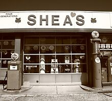 Route 66 - Shea's Filling Station by Frank Romeo