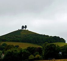 Colmer Hill,      Symondsbury Dorset UK by lynn carter