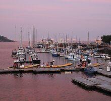 Purple Sunset Tadoussac Harbour by hummingbirds