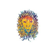Lion Of The Art Photographic Print