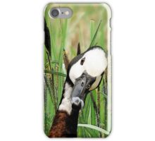 Whistling Duck iPhone Case/Skin