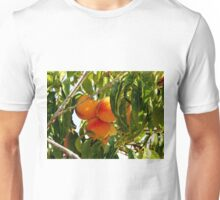 Time to Harvest Unisex T-Shirt