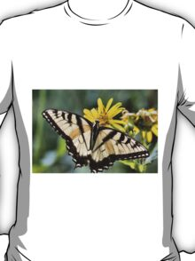 Swallowtail Posing  144 views 9/14/14 T-Shirt