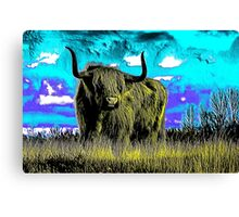 Long Horn Canvas Print