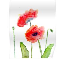 Simple Poppies Poster
