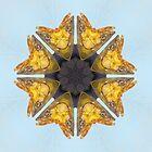 Fishy Kaleidoscope by MaeBelle