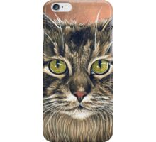 "Maine Coon Cat Painting, ""Emma"" iPhone Case/Skin"