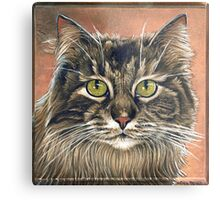 """Maine Coon Cat Painting, """"Emma"""" Metal Print"""