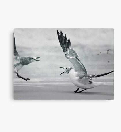 Beach Birds Canvas Print