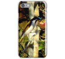 Blue face honey eater in my garden iPhone Case/Skin