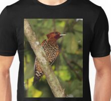 Male Cinnamon Woodpecker Unisex T-Shirt