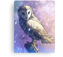 Owl - Showers Metal Print