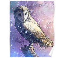 Owl - Showers Poster