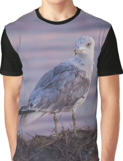 Larus Delawarensis - Ring-Billed Gull | Fire Island, New York Graphic T-Shirt