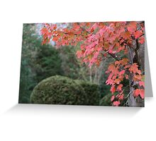 Autumn Pink Greeting Card