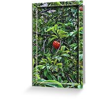 The Green Fruit Turned Red Greeting Card