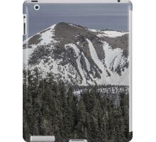 Freel Peak iPad Case/Skin