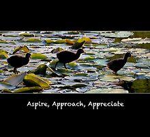Aspire, approach, appreciate. by Lisa Torma