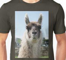 An Irish llama Unisex T-Shirt