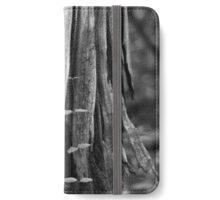Shards of Life iPhone Wallet/Case/Skin