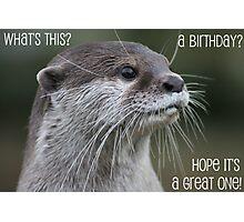 Otter birthday card Photographic Print