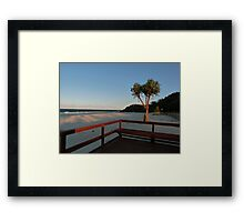 Boardwalk with a Tree with a View Framed Print