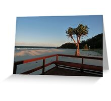 Boardwalk with a Tree with a View Greeting Card