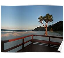 Boardwalk with a Tree with a View Poster
