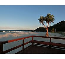 Boardwalk with a Tree with a View Photographic Print
