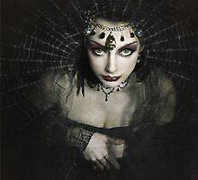 Queen of Shadows by Jennifer Rhoades