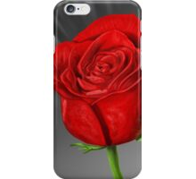 Rose Ray iPhone Case/Skin